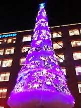 クリスマスツリー@avex
